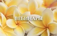 Вебинары Женской Школы Елены Легентовой